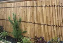 zabor-iz-bambuka-small